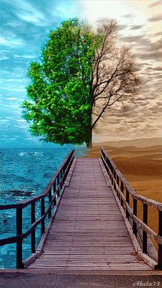 Qual lado você está?