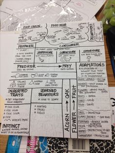 Science STAAR review sheet #1 I have students make to prepare for the 5th grade STAAR