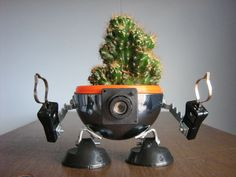 Make robo-planters re-using home junk