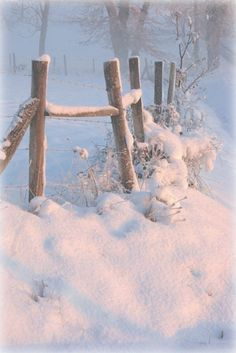 Soft glow of winter sunlight. Can't wait for winter Winter Szenen, I Love Winter, Winter Magic, Winter Christmas, Winter White, Country Fences, Snowy Day, Snow Scenes, Winter Beauty