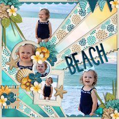 Beach_SSD_mrsashbaug