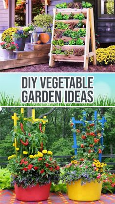 Container Flowers, Container Plants, Plant Containers, Container Gardening Vegetables, Vegetable Garden, Garden Diy On A Budget, Diy Water Fountain, Small Space Gardening, Garden Trees