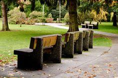 Minoru Park, Richmond BC 2010 Fraser Valley, Outdoor Furniture Sets, Outdoor Decor, Places To Go, Sidewalk, October, Park, Wood, Nature