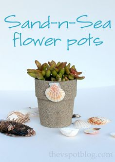 Easy Sand-N-Sea Flower Pots.  recycling project. play sand and glue over terra cotta or resin flower pots.  Cute kids project.  thevspotblog.com