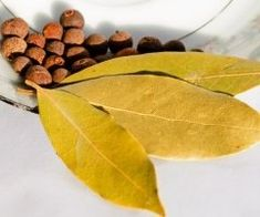 Bay Leaves (Laurus nobilis, Lauraceae) have a long and noble history (Bay leaves infusion promotes sweating, breaking fever, and flu symptoms) Bay Leaf Benefits, Home Remedies, Natural Remedies, Burning Bay Leaves, Laurus Nobilis, Dry Leaf, Quiche Lorraine, Health And Beauty Tips, Jamaica