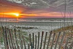 Beach Fence Sunrise - Amelia Island, Florida