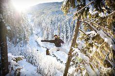 Ziptrek Bear Tour Whistler - 2011