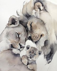 Lion family cat bigcat cat catart tattoos bigcat cat catart - Gave Ideer Watercolor Animals, Watercolor Paintings, Watercolor Lion Tattoo, Elephant Watercolor, Watercolours, Lion Family, Family Family, Lion Drawing, Drawing Tips