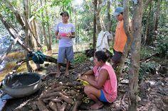 Amazon Rainforest, This Or That Questions, Travel, Viajes, Destinations, Traveling, Trips, Tourism