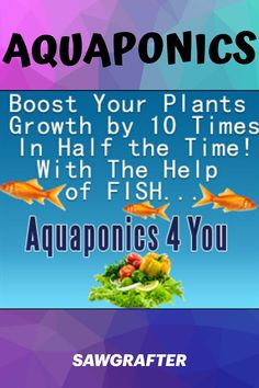 Growing plants in water, what a great DIY idea! Good Books, Books To Read, My Books, Desk Tray, Water Plants, Aquaponics, Growing Plants, Wood Crafts, The Help