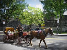I want to take a horse & buggy ride.  Doesn't have to be in Quebec, or Paris, or New York, but I would LOVE to do this, just once.   Quebec City. Taking a horse and buggy ride is a very popular thing to do in Quebec City