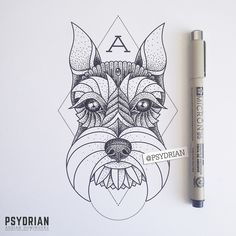 Schnauzer tattoo design on Behance