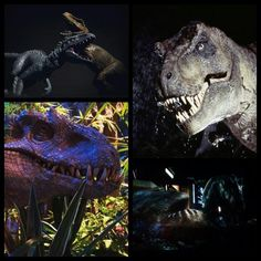 "Jurassic World- Battle of Titans: Stats Tyrannosaurus Rex Size- 16'10"" high, 44' long Techniques- headbutting, strong jaws (alligator design), head splitting roar, great sense of smell. Indominus Rex Size- 20' high, 50' long Techniques- camouflage, intelligence, hands with claws, horns, strong (crocodile design) and expandable jaws, louder roar (mix between a 747 Turbo Plane and Godzilla/ MUTO). T-Rex literally gets beat.; Creation of the Indominus Rex: The Indominus Rex was created in the…"