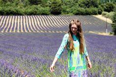 cánh đồng hoa oải hương