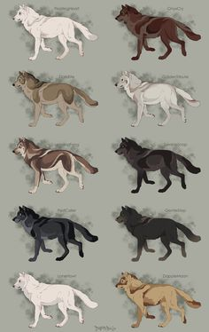Semi-Realistic Wolf Adoptables Set 3 - CLOSED by Therbis on DeviantArt