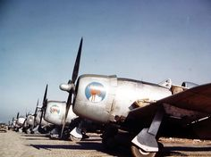 Republic P-47 Thunderbolts of the First Brazilian Fighter Squadron lined up on an airfield somewhere in Italy.