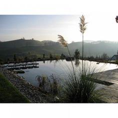 piscine naturelle, piscine biologique - Marie Claire Maison