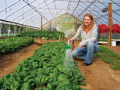 A simple high tunnel framework covered with plastic defeats inclement extremes and extends the vegetable gardening season.