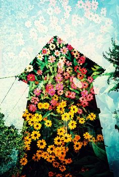 When you do it right, #lomogrophy is incredibly beautiful. #doubleexposure