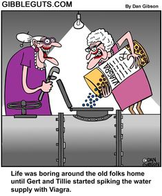 Cartoon about two old ladies spiking the water supply with Viagra Funny Cartoons, Funny Comics, Cartoon Jokes, Funny Humor, Old Lady Cartoon, Old Lady Humor, Senior Humor, Old Folks, Adult Humor