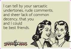 I can tell by your sarcastic undertones, rude comments, and sheer lack of common decency, that you and I could be best friends.   Snarkecards