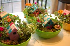 Fairy Gardens. Great activity for the girls to make and take home - way better than a lolly bag!