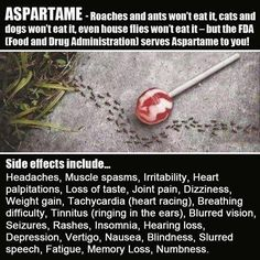 ASPARTAME made from E coli feces The European patent for aspartame confirms the artificial sweetener is made from the waste products of genetically modified E. Health And Beauty, Health And Wellness, Health Tips, Health Fitness, Health Practices, Fitness Pal, Wellness Quotes, Calling All Angels, Good To Know