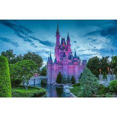 "Cinderella Castle during the ""Blue hour""  View the full versions of my photos at www.Facebook.com/Disneyphotosnapper  #waltdisneyworld #waltdisney #disneyworld #wdw #Disneyparks #Travel #Love #Photooftheday #Picoftheday #Fun #Disney #Canon #fd101look #Disneygram #latergram #tiggerlovesdisney #magickingdom #bluehour #cinderellacastle #DisneyPhotoSnapper #MickeyMouse #POTD #Mickey"