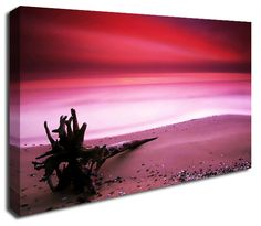 Simply Canvas have a variety of seascape canvas prints. Original wall art from Pink Canvas Art, Canvas Art Prints, Canvas Wall Art, Pink Ocean, Wall Prints, Feng Shui, Northern Lights, Colours, Year 2016