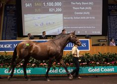 The Magic Millions National Broodmare sale once again returned figures comfortably up on last year during its second session on the Gold Coast on Wednesday. From a larger catalogue--572 offered thus far compared to 445 …