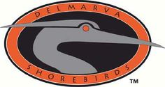 The Delmarva Shorebirds won 4-1 Tuesday evening against the Savannah Sand Gnats, which set them back on track.   For more--http://www.wboc.com/story/25317739/shorebirds-even-series-with-savannah-4-1
