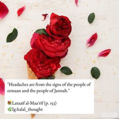 """HEADACHE: - Headache is a means of forgiveness and reward. Abu Said al-Khudri (Radiy'Allahu'anhu) that the Prophet (Sallahu'alayhi'wa'salam) said: """"The headache that afflicts the believer, or a thorn that pricks him/her, or anything that harms him/her, Allah will raise him/her a degree on the day of resurrection and expiate his/her sins due to it"""" 🌸[Saheeh Targheeb no. 3434] May Flowers, Flowers Nature, Pretty Flowers, Flower Prints, Flower Art, Flower Petals, Homemade Perfume, David Austin Roses, Floral Photography"""