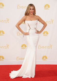 15 Most Glamorous Gowns at the Emmys 2014 Sofia Vergara in Roberto Cavalli