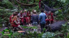 """Diese Promi's ziehen in den Dschungel! Ab Januar startet wieder """"Ich bin ein Star, holt mich hier raus!"""