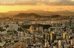 Seocho-Dong, 서초동, Seoul