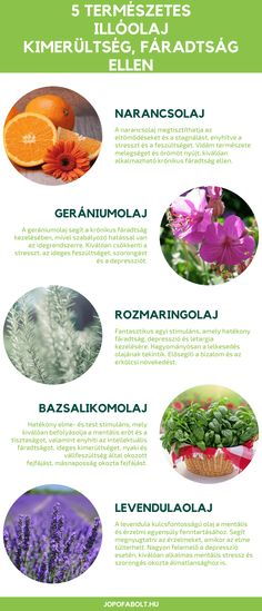 Doterra Blends, Therapy, Medical, Health, Health Care, Medicine, Healing, Med School, Active Ingredient
