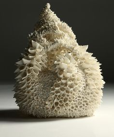 Irish ceramic artist Nuala O'Donovan, imitating nature
