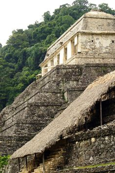 Palenque is an ancient Mayan city located about 500 miles southeast of Mexico City
