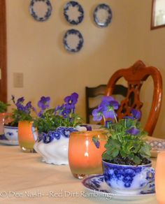I planted violas in a flow blue china gravy boat and four teacups with saucers. Between them, I placed glassybaby candle holders. Flow Blue China, Little Gardens, Window Boxes, Hanging Plants, Summer Recipes, St Patricks Day, A Table, Planter Pots, Candle Holders