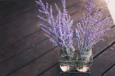 Perennial herbs are dual-purpose plants that can be used in recipes and home remedies while adding beauty to your garden. Permaculture, Herb Garden, Vegetable Garden, Pot Jardin, Best Perennials, Herbal Plants, Flower Meanings, Victorian Flowers, Language Of Flowers