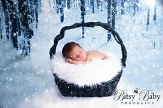 """It's time for a winter giveaway! A mini """"Winter Wonderland"""" session, a $95 value! This can be for a newborn, milestone, child, or maternity session. The winner will receive an in-studio mini session with 5 digital downloads! Enter by clicking on this link: http://gvwy.io/3d6lm6 or the """"Giveaway"""" box on my FB page. You can earn new entries everyday! Please share this post with your friends! Good luck!, Thea Ellenberg, Stylized Newborn, Maternity, Family Photography, www.bitsybabyportraits.com"""