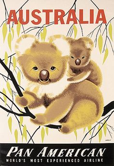 Australia Pan American Airlines travel poster: c 1950 koala bears