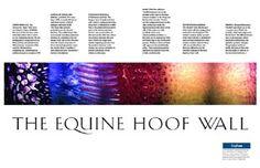 """Inside the Hoof Wall"" Microscopic Anatomy"