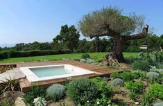 Jacuzzi, Terrasse Design, Pergola, Mansions, House Styles, Outdoor Decor, Pools, Home Decor, Images