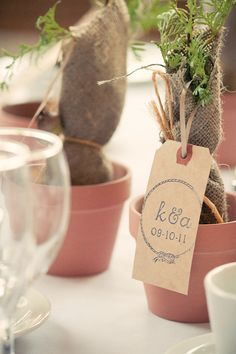 Tree Seedlings Favors And Gifts For Weddings Promotional Wedding