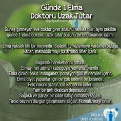 Unutmayın! Günde 1 elma doktoru evden uzak tutar Yeşil elmanın saymakla…