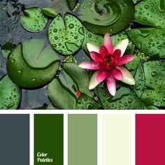 color-palette-22
