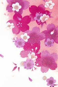 着物 No:732 商品名:白地 ピンク桜