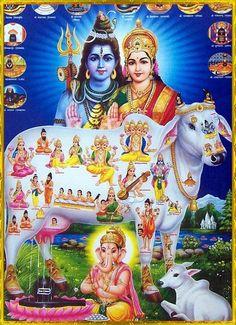 Hindu god n goddesses Shiva Parvati Images, Shiva Hindu, Shiva Art, Shiva Shakti, Hindu Deities, Krishna Art, Hindu Art, Indian Goddess, Goddess Lakshmi