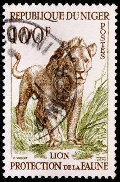 NÍGER - CIRCA 1959: Un sello de 100 francos impreso en la República de Níger, muestra un león (Panthera leo) en la hierba para promover la protección de la fauna, alrededor del año 1959.